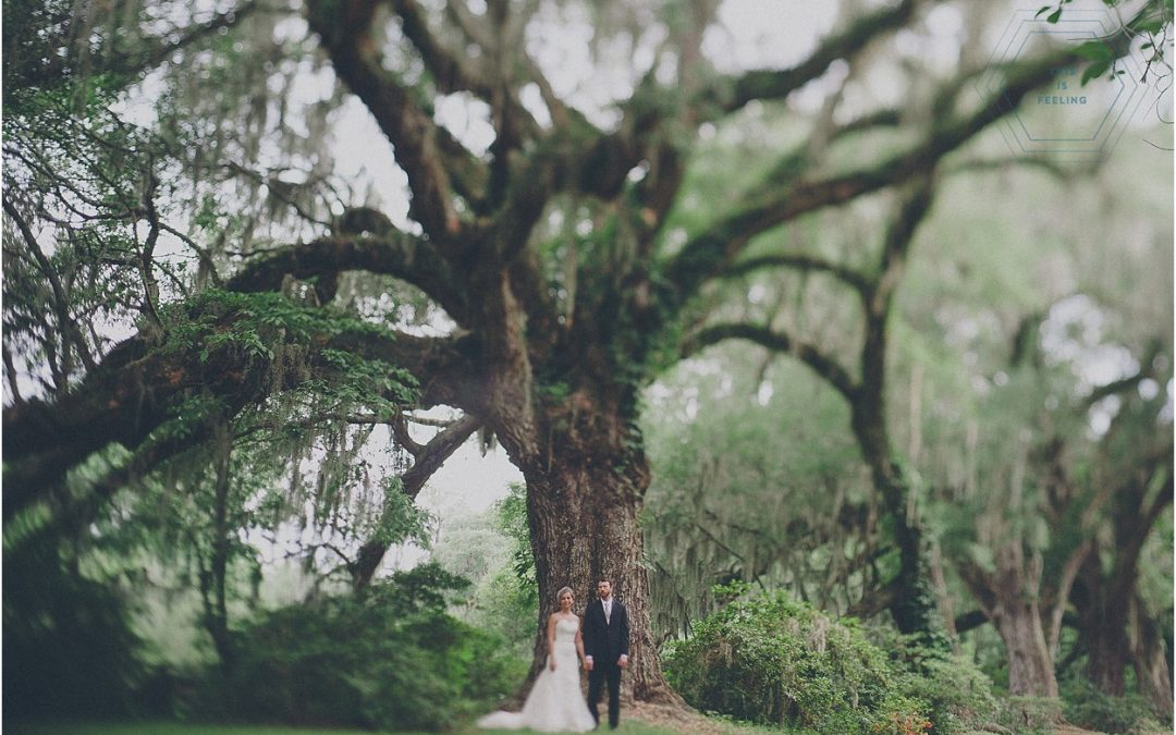 Daniele & John // Charleston, South Carolina Destination Wedding, Magnolia Plantation